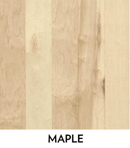 maple h hardwood species