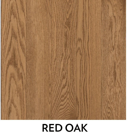 red oak hardwood species